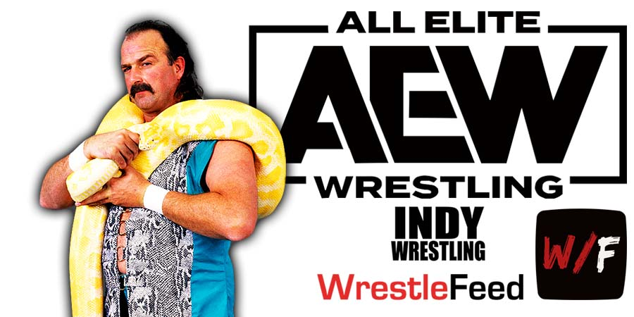 Jake Roberts AEW All Elite Wrestling Article Pic 3 WrestleFeed App
