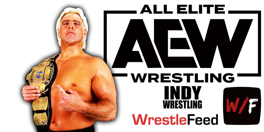 Ric Flair AEW All Elite Wrestling Article Pic 7 WrestleFeed App