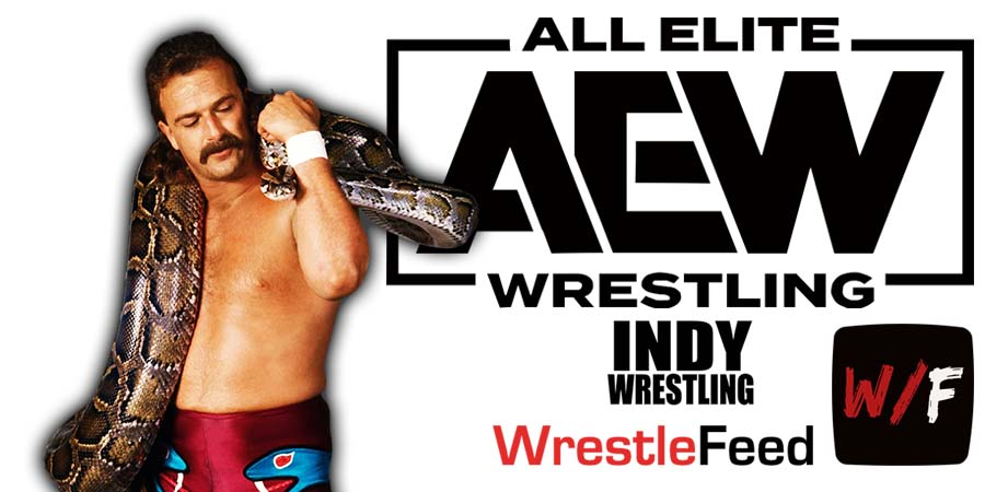 Jake Roberts AEW All Elite Wrestling Article Pic 4 WrestleFeed App